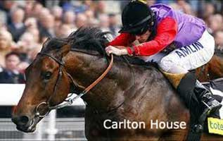 Carlton House racehorse